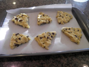 Orange Dark Chocolate Chip Gluten Free Scones before cooking