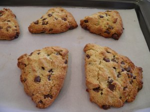 Orange Dark Chocolate Chip Gluten Free Scones in the oven