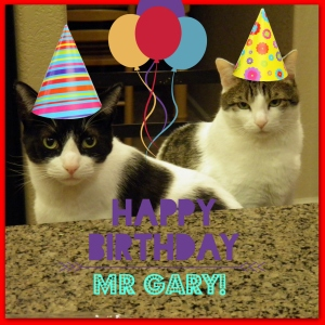 Rufus & Sweet Pea also wished Veggie Hubby a Happy Birthday on their Facebook Fan Page